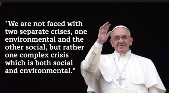 Pope Francis One Crisis Laudato Si' (2)